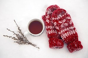 pair of red mittens lie on the snow