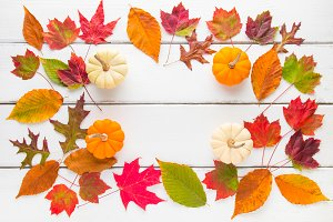 Autumn leaves and pumpkins frame