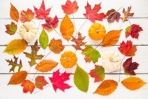 Autumn pattern composition