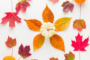 Autumn pattern 1