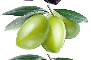 Green, black and kalamata olives