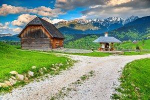 Spring rural landscape,Romania