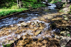 Mountain River on the way to Mount Hoverla