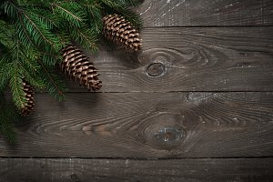 Christmas fir tree branch