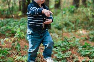 A Little Wanderer