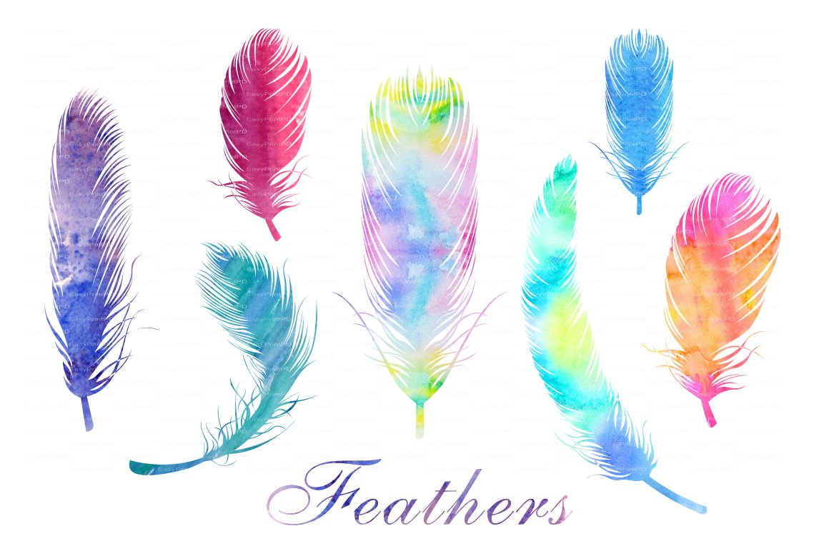 watercolor feathers png and eps file web elements creative market
