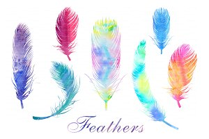 Watercolor Feathers PNG and EPS file