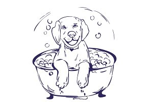 Dog bath vector illustration