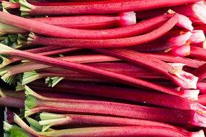 Rhubarb at the market