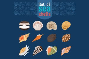 Sea shells flat set