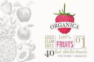 ORGANIC LOGO ELEMENTS – FRUITS
