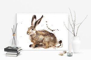 Rabbit watercolour illustration