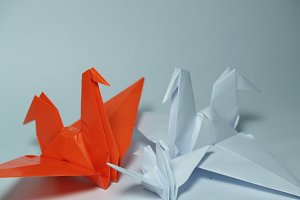Origami,paper crane on white background.