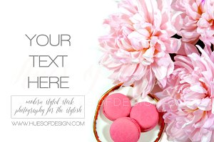 Pink Flowers Macarons | Styled Stock