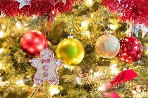 Hanging Xmas Cookie in Tree