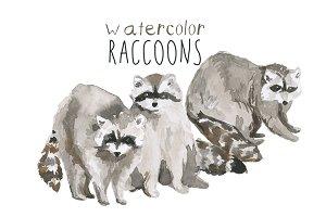 Watercolor Raccoons Clip Art