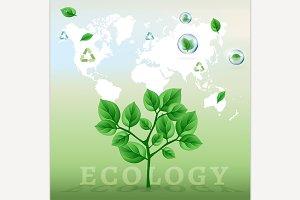 Ecology World Infographics