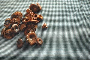Mushrooms on a blue and white checkered tablecloth