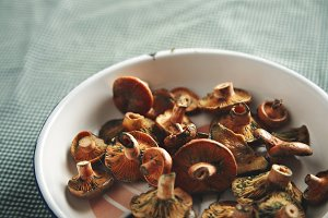 Fresh mushrooms in white bowl