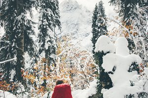 Traveler hiking in winter forest
