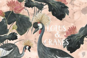 Watercolor lotus and grey cranes