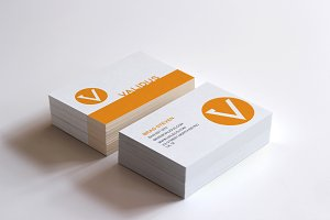 Validus Simple Business Card Design