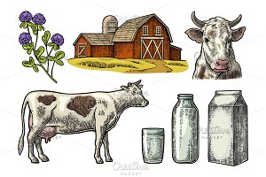 Set Milk farm. Cow clover bottle box
