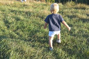 Little child goes on green grass at the field to his father at sunny day. Happy family on a summer meadow. Baby boy walking to his daddy outdoor. Toddler learning to walk. Rear back view. Close up.