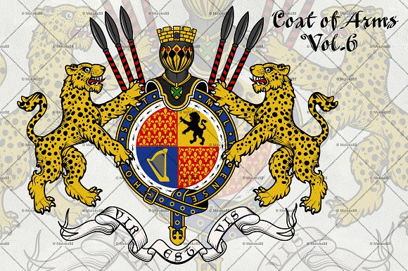 Coat Of Arms Of Knight.Vol 6