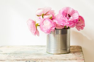 Pink ranunculus in a tin can