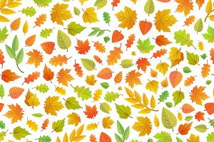 A lot of cute autumn leaves pattern