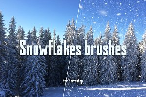 Real snowflakes brush