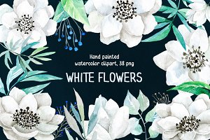 Watercolor white flowers 38 png