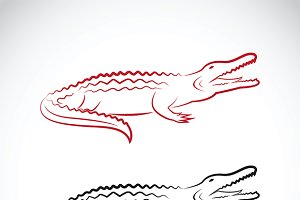 Vector of crocodile design.