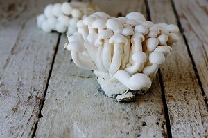 white Chinese mushrooms on wooden, selective focus