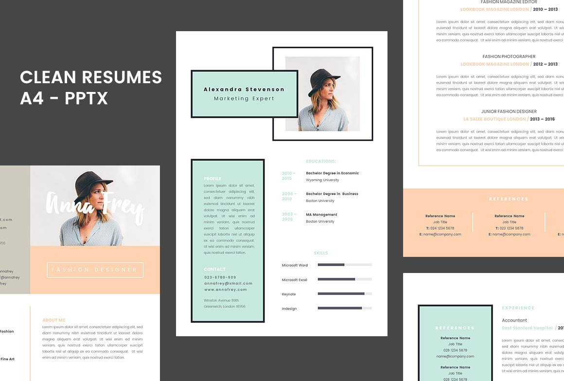 resume 10 a4 powerpoint format resume templates creative market - Powerpoint Resume Template