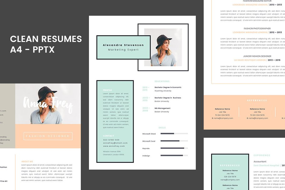 Powerpoint Resume Template.Resume 1 0 A4 Powerpoint Format