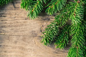 Christmas fir pine sprouns wooden background