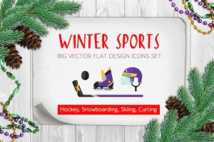 Winter Sports Vector Icons SET