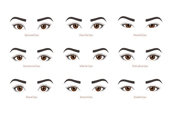 types of woman eyes eye shapes illustrations creative market