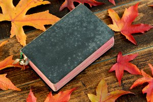 Book with fall leaves