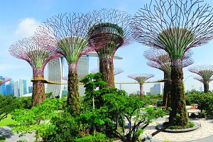 Gardens by the Bay, Singapore.jpg