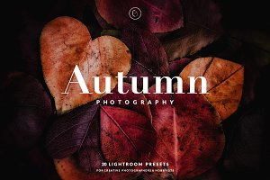 Autumn Lightroom Presets