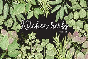 Kitchen herbs set