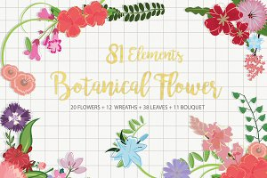Beautiful Vector Botanicals Flower