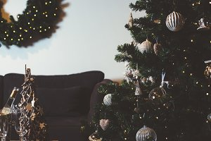 Decorated fir tree in living room