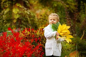Cute little girl and autumn leaves
