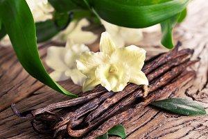 vanilla sticks and flower
