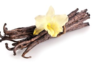 Bunch of vanilla sticks and orchid