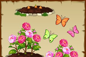 Pink peony, butterflies and gift box